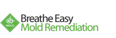 Breathe Easy Mold Remediation